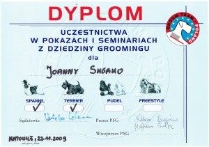 Grooming dyplom