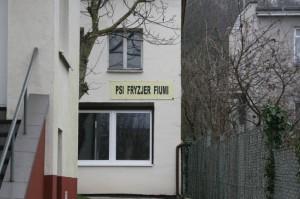 Widok z ulicy na salon dla psow Fiumi Gdansk 3