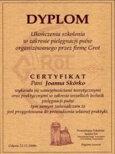 dyplom3